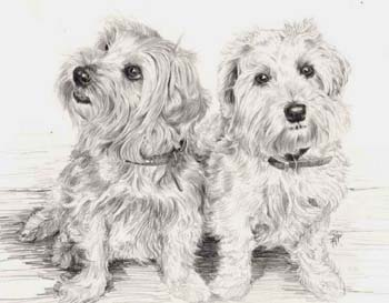 Poppy and Jemmima commissioned pencil drawing